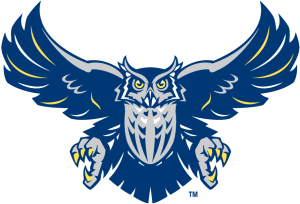 A version of the Rice Owl from 2003