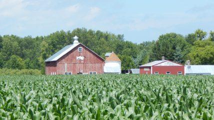 Farmland is Wisconsin